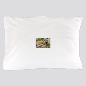 LION FAMILY Pillow Case