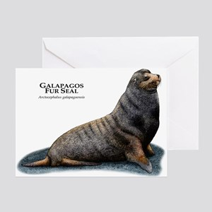 Galapagos Fur Seal Greeting Card