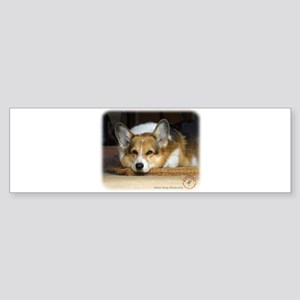 Welsh Corgi Pembroke 9R022-030_2 Sticker (Bumper)