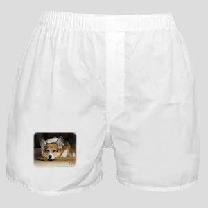 Welsh Corgi Pembroke 9R022-030_2 Boxer Shorts
