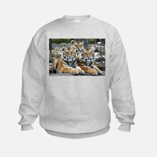 TIGERS Jumpers