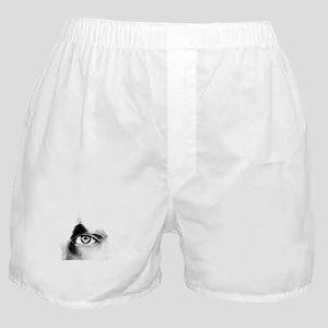 Eye Sketching Boxer Shorts