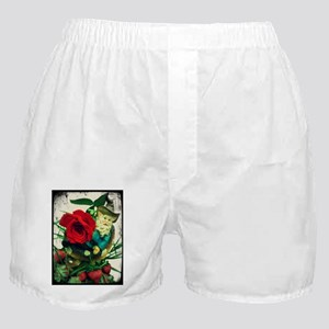 The Liberated Gnome Boxer Shorts