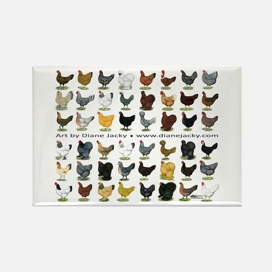 48 Hens Promo Rectangle Magnet