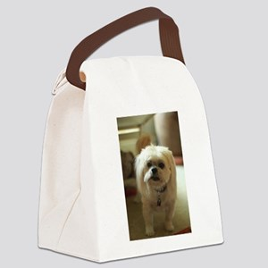 indoor dogs floppy ears Canvas Lunch Bag
