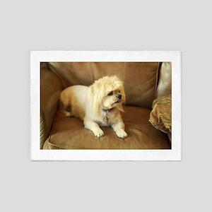 indoor dogs floppy ears Koko lookin 5'x7'Area Rug