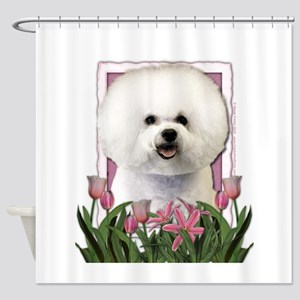 Mothers Day Pink Tulips Bichon Shower Curtain