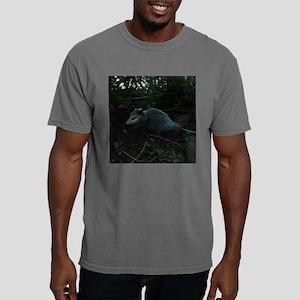 Baby Opossum at dawn cl Mens Comfort Colors Shirt