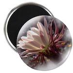 White Cactus Flower Magnet