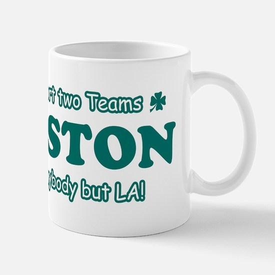 Funny Boston Designs Mug