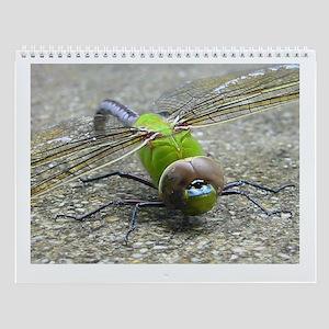 Dragonfly Wall Calendar