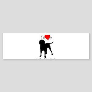 Perro de Presa Canario Bumper Sticker