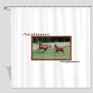 Mare and foal Arabi... Shower Curtain