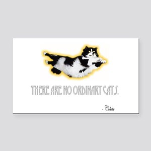 Superkitty Rectangle Car Magnet