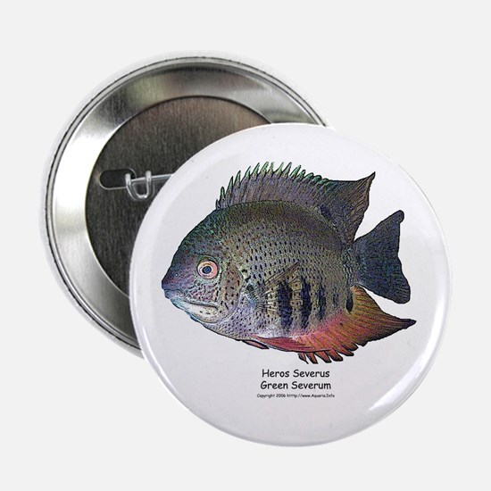 Heros severus - Green Severum Button