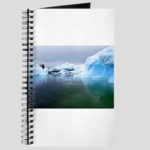 Antarctica Water! Iceberg Journal