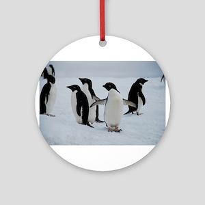 Adelie Penguin in Antarctica Ornament (Round)