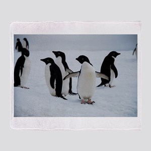 Adelie Penguin in Antarctica Throw Blanket