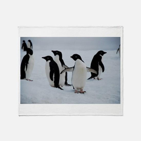 Adelie Penguin in Antarctica Throw Blanket