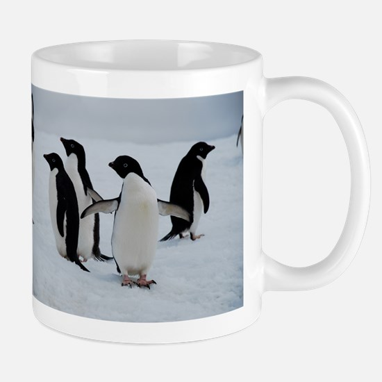 Adelie Penguin In Antarctica Mug Mugs