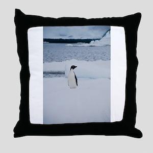 Adelie Penguin in Antarctica Throw Pillow