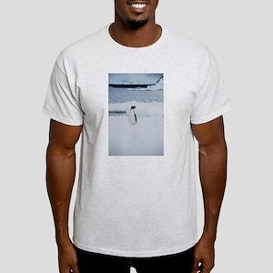 Adelie Penguin in Antarctica Light T-Shirt