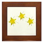 Yellow Columbine Framed Tile