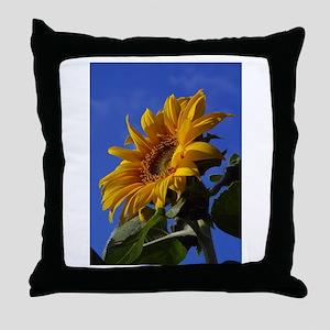 Tuscan Sunshine Throw Pillow