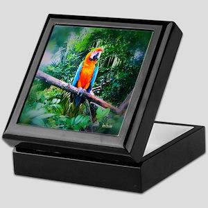 Martinique Macaw Keepsake Box