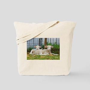 Buddy Lambs-Whisper Lambs Tote Bag