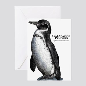 Galapagos Penguin Greeting Card