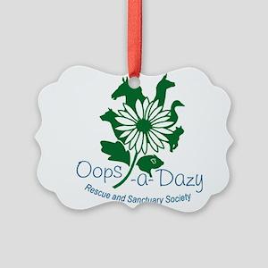 colour logo Picture Ornament