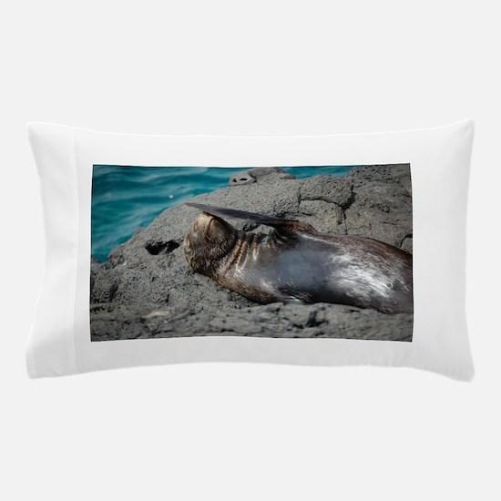 Seal Pillow Case