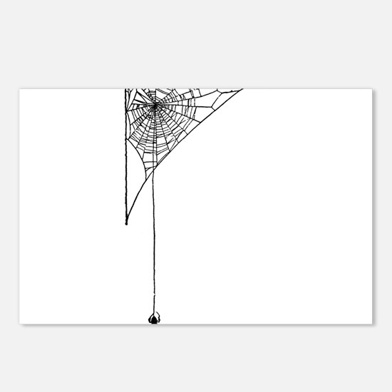 spider Postcards (Package of 8)