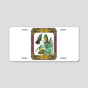 Buff Bellied Hummingbirds Aluminum License Plate