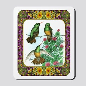 Buff Bellied Hummingbirds Mousepad