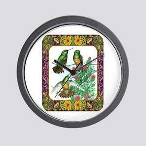 Buff Bellied Hummingbirds Wall Clock