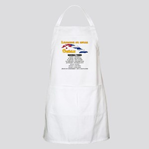 BASEBALL TERMS copy Apron