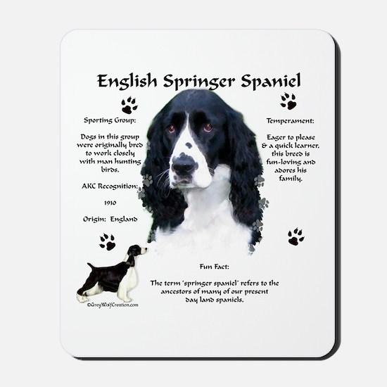 Springer 1 Mousepad