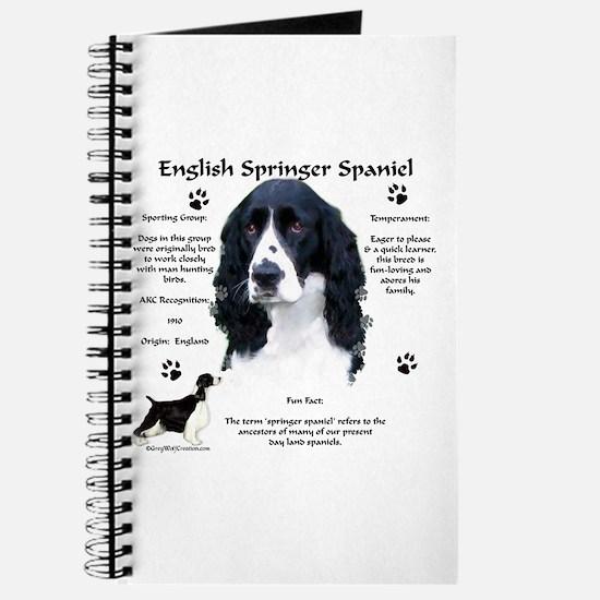 Springer 1 Journal