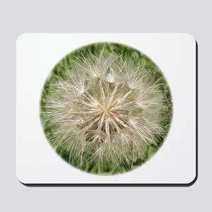 Milkweed Seeds Mousepad