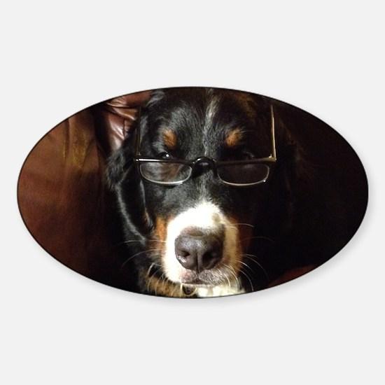 Erudite Berner Sticker (Oval)