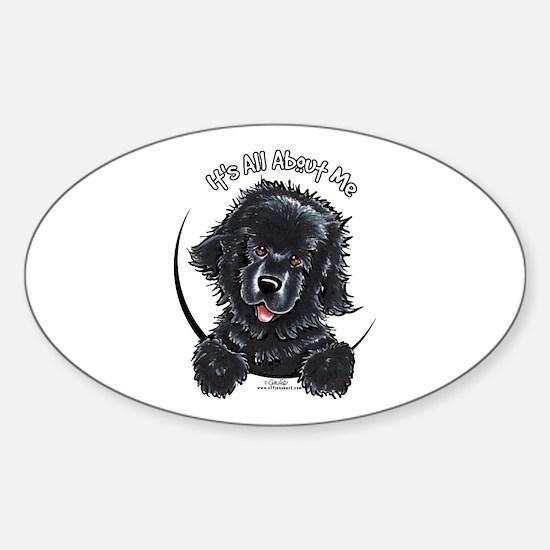 Black Newfie IAAM Sticker (Oval)