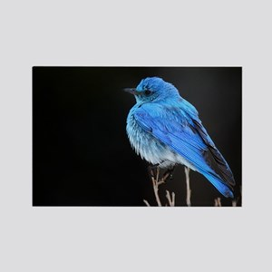 Mountain Blue Bird Rectangle Magnet
