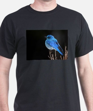 Mountain Blue Bird T-Shirt