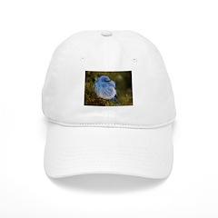 Mountain Blue Baseball Cap