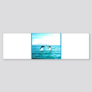 3 Jumping Dolphins Square Baby Blue Border Sticker