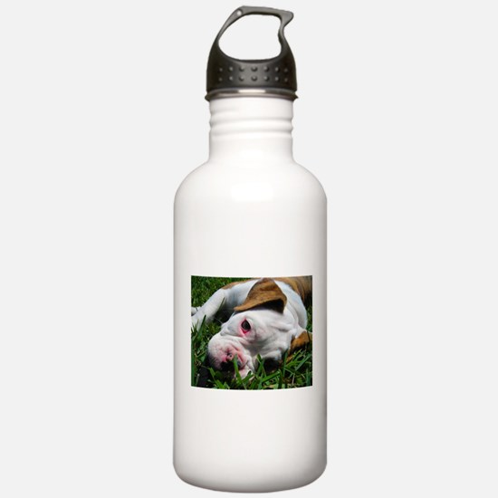 Baby Rufus Grass copy.jpg Water Bottle