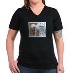 Samoyed Women's V-Neck Dark T-Shirt