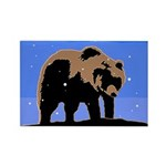 Winter Grizzly Bear Rectangle Magnet